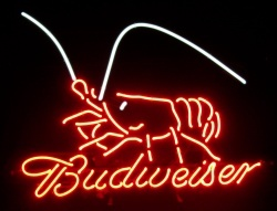Budweiser Beer Lobster Neon Sign  MY BEER SIGN COLLECTION – Not for sale but can be bought… budweiserlobster